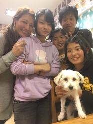 ミミ 雑種犬.JPG