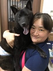 (あずき 甲斐犬).jpg